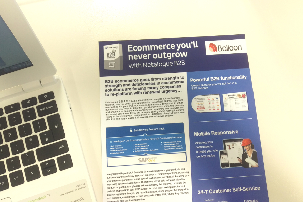 Netalogue B2B e-commerce software