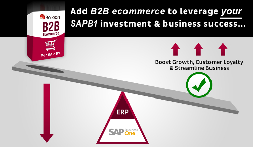 B2B Ecommerce for SAP Business One