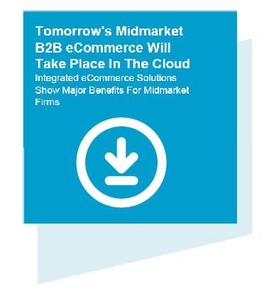 B2B eCommerce Cloud download pdf